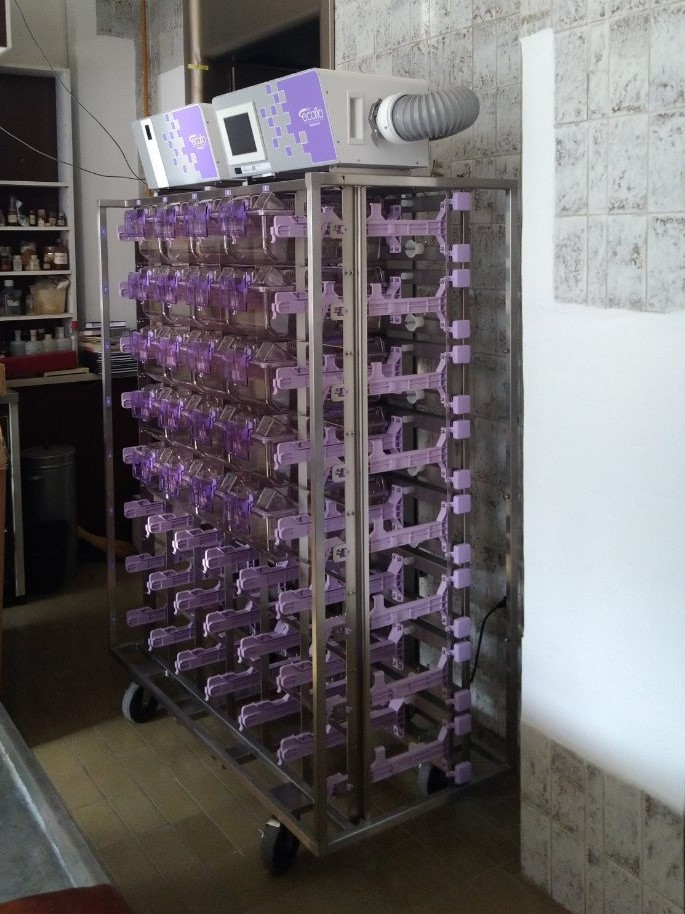 Система ИВК NexGen Mouse для ИБХ, Москва