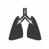 Анестезиологические установки и системы для искусственной вентиляции легких (ИВЛ)