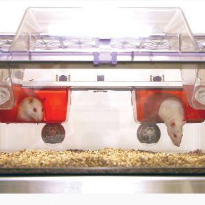 Клетка для крыс NexGen 1800
